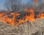 Травяные пожары